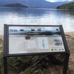 2017 Priest Lake Interpretive Sign