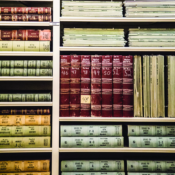 Government Records, ledgers